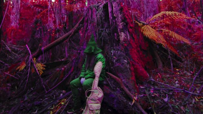 Album Review: Rebel Wizard - Magickal Mystical Indifference