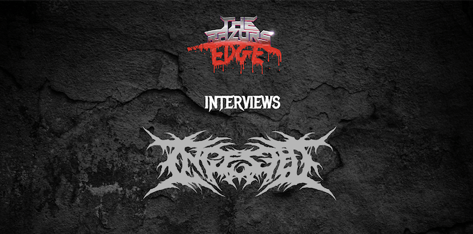 Interview: Ingested