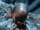 Skunk Anansie Announce Rescheduled 2021 Live Dates